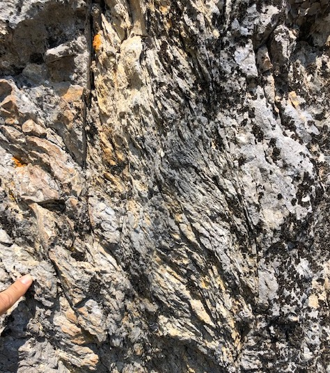 Foliated cataclasite, normal fault, Sasso Rosso, Italy